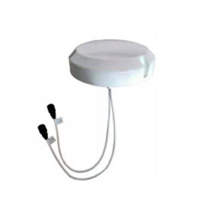 Indoor MIMO Ceiling Omni Antenna
